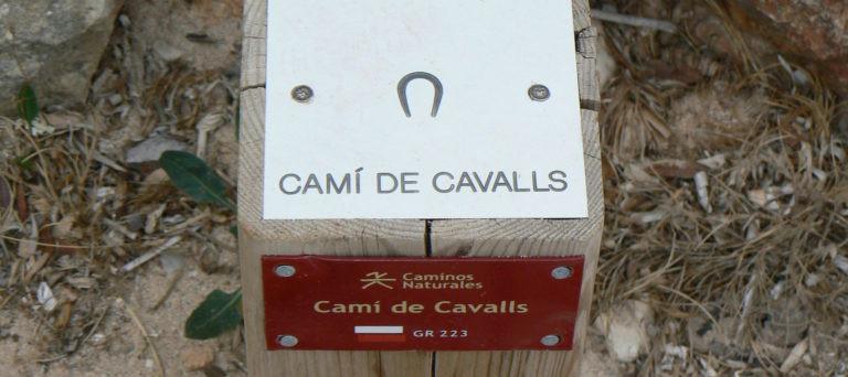 Le Cami de Cavalls ou GR 223, un chemin incontournable pour découvrir Minorque !