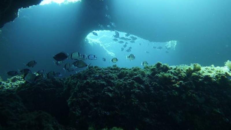 Centre de plongée d'Ibiza