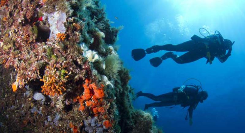 Centre de plongée de Porto Cristo à Majorque